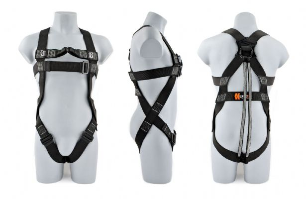 2-Point Elasticated Harness + Twin Tails